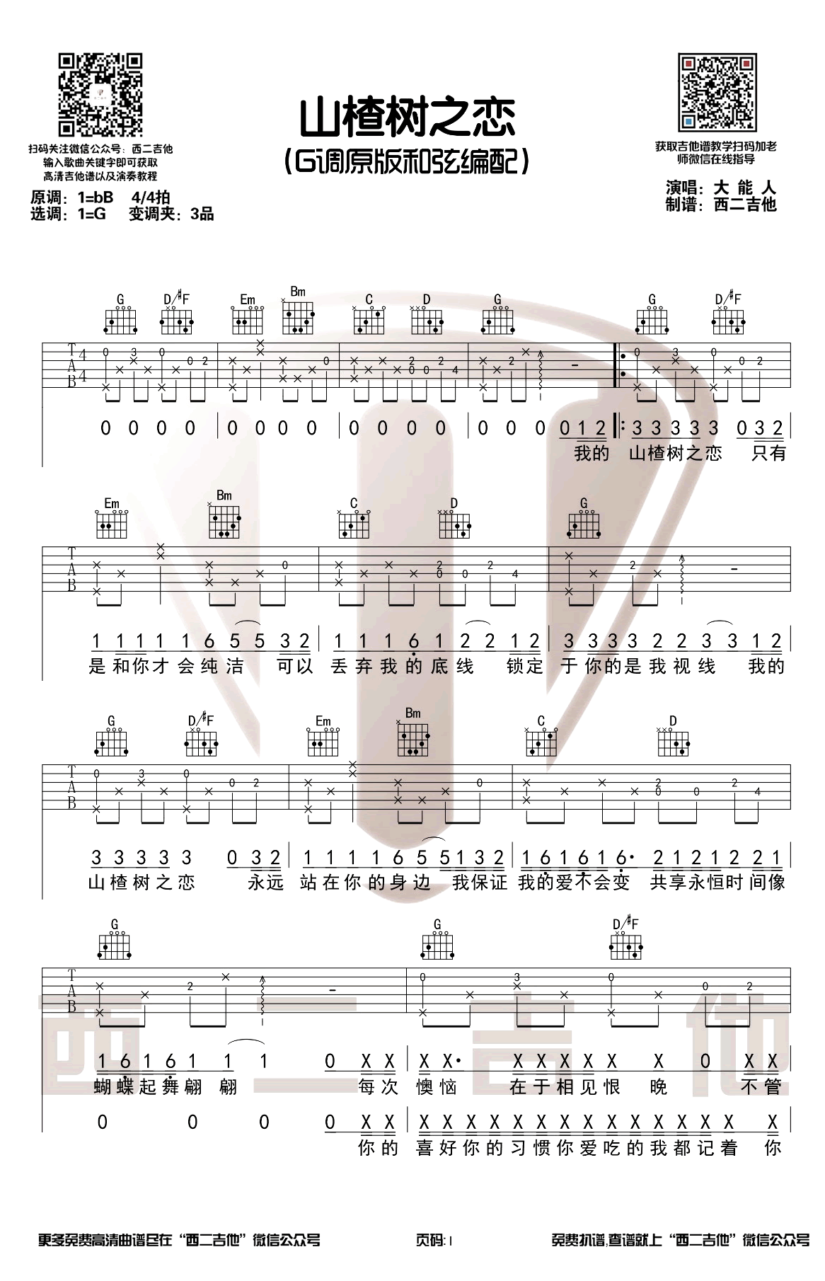 《山楂树之恋》吉他谱_大能人_G调原版_弹唱六线谱_图片谱1